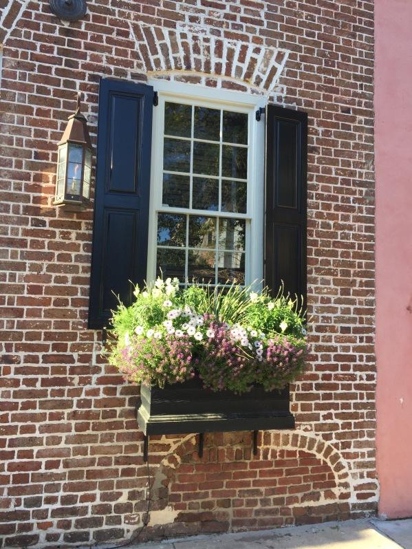 Inspiration Charleston And Savannah Window Boxes Sandra